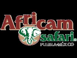 Africam-Safari